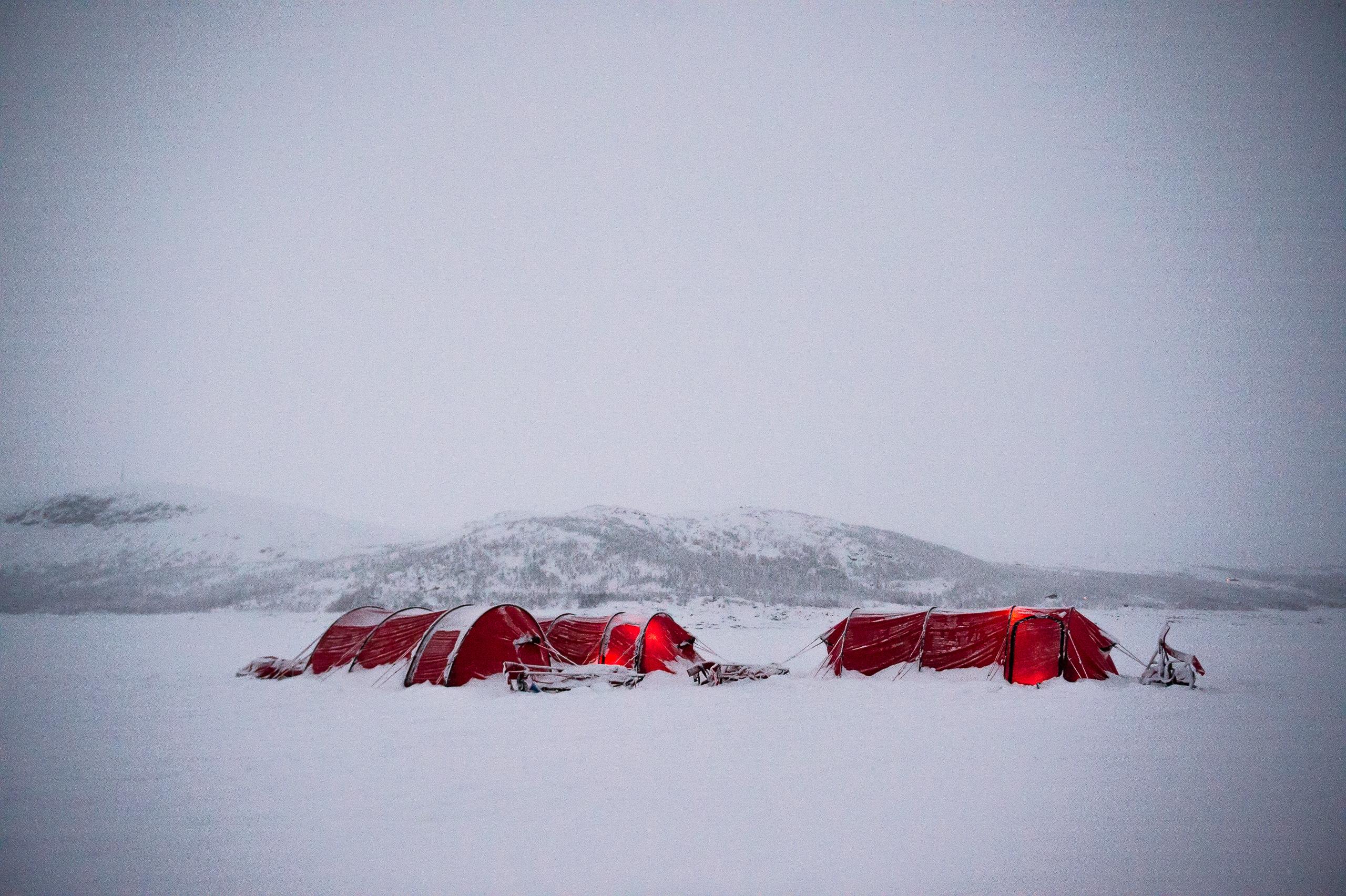 Ex Ice Maiden Tents