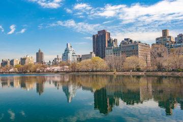 Top 5 US cities