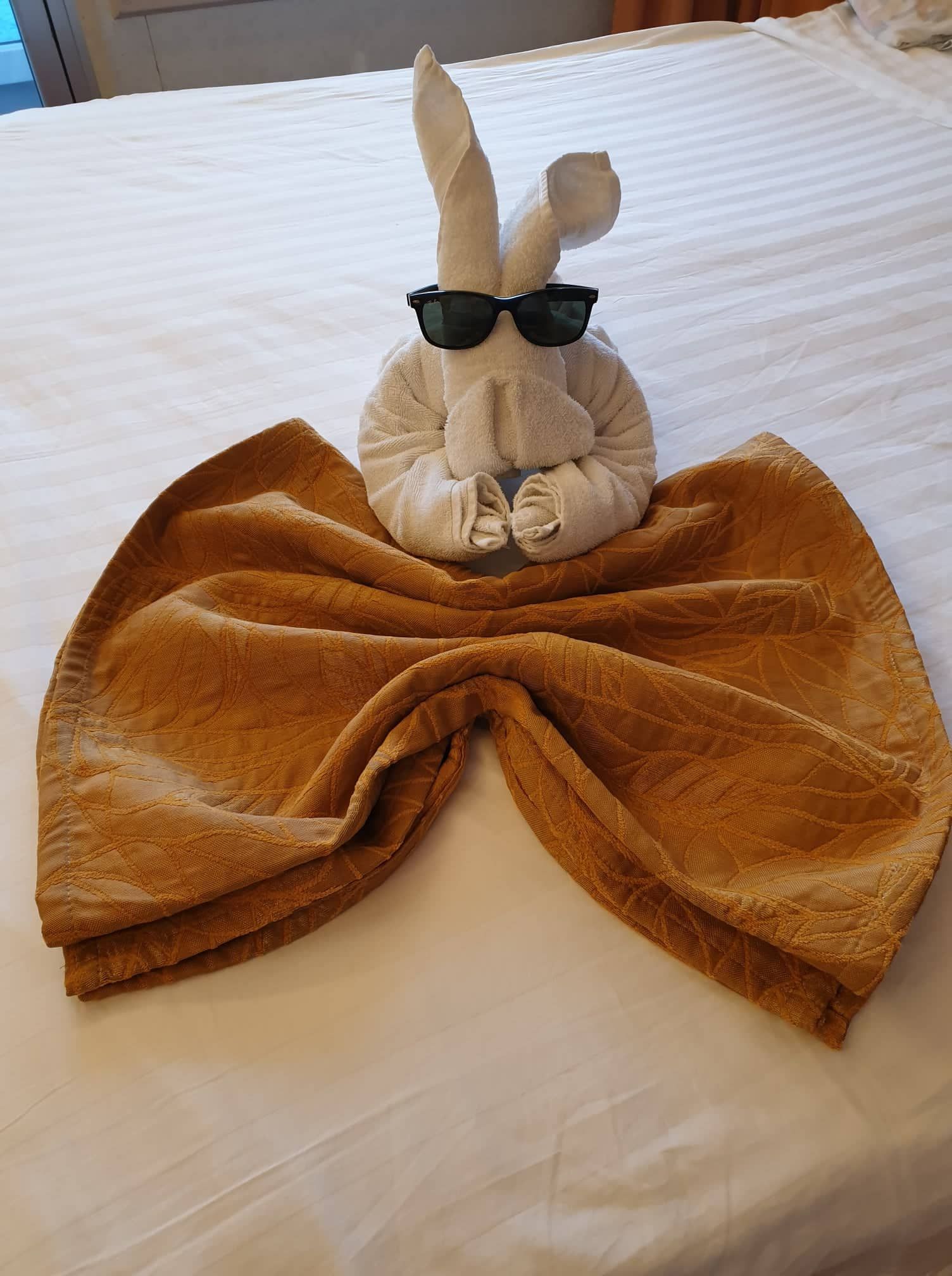 Cruise Towel in cabin