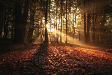 UK autumn travel travel destinations