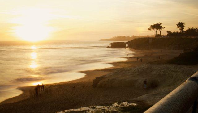 Santa Cruz felton