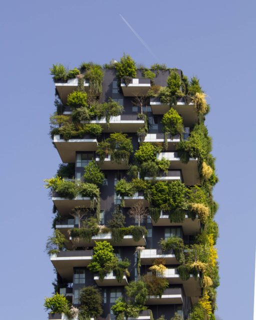 eco-friendly eco-holidays eco tourism