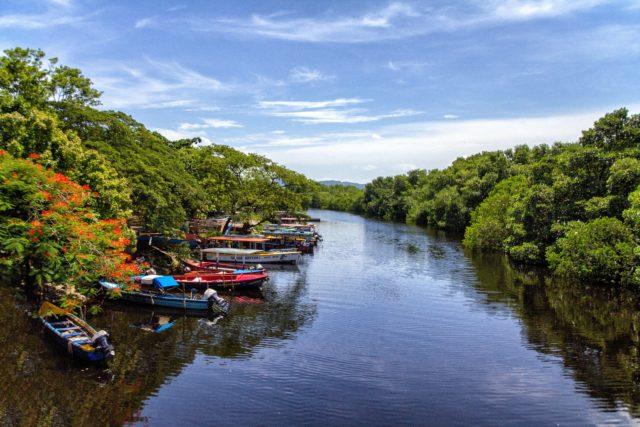 Martha Brae River Caribbean Activities Montego Bay